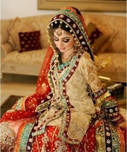 Paistani Bridal Dresses-Stylesgap (19)