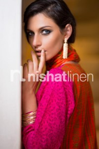 Latest Nishat linen Winter Collection- Stylesgap (3)