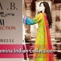 Maria B Indian Dresses Collection For Women 2013-2014 (18)