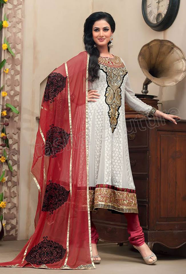 Latest Indian and Asian Anarkali Frocks and Dresses 2014-2015  (3)
