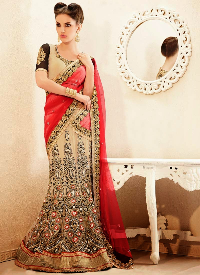 Latest Indian and Asian Designer Party wear and wedding Saree Collection for Women 2014-2015 (13)