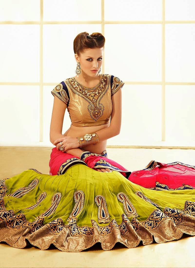 Latest Indian and Asian Designer Party wear and wedding Saree Collection for Women 2014-2015 (6)