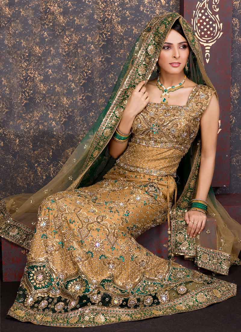 Latest Designs of Party & Wedding Formal Lehenga Choli Dresses collection for women 2014-2015 (1)