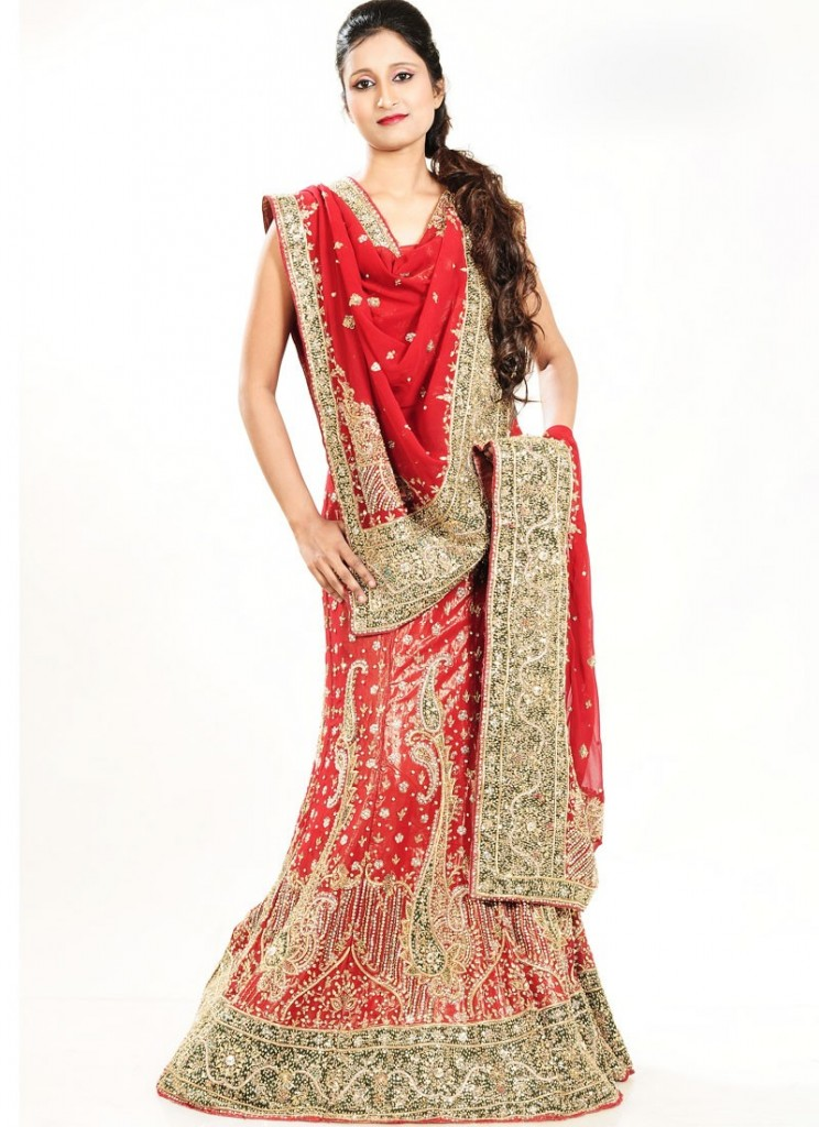 Latest Designs of Party & Wedding Formal Lehenga Choli Dresses collection for women 2014-2015 (2)