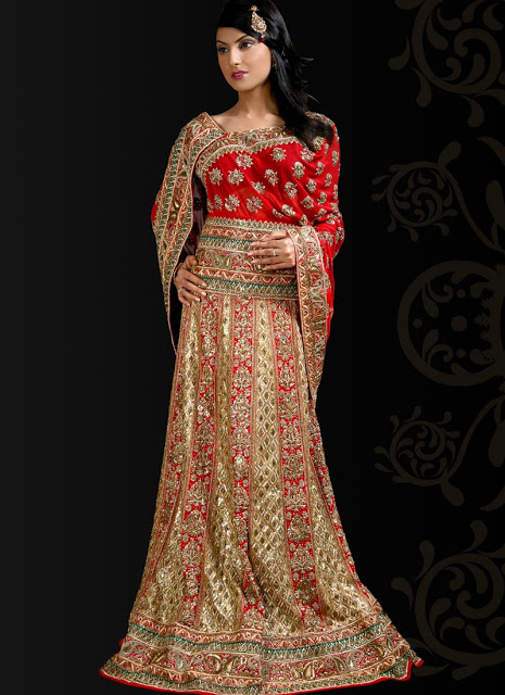 Latest Designs of Party & Wedding Formal Lehenga Choli Dresses collection for women 2014-2015 (6)
