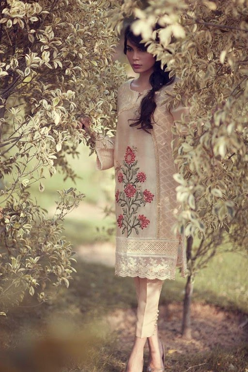 Latest Eid Wear Dresses Collection for Women 2014-2015 (4)
