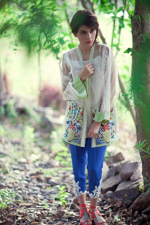 Latest Eid Wear Dresses Collection for Women 2014-2015 (8)