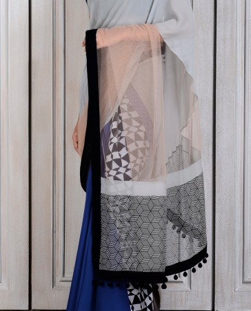 Manish Malhotra Latest Collection of Fancy and Embroidered Saree Designs for Women (18)