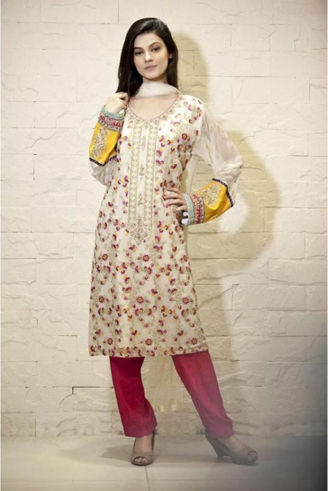 Latest Women Best Pakistani & Indian  Winter Dresses Designs Collection 2014-2015 (12)