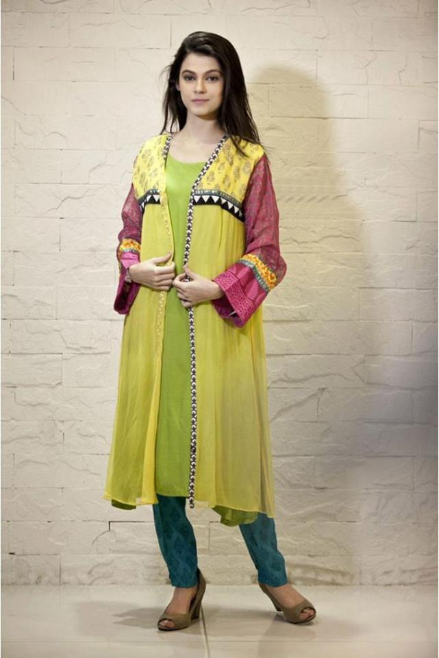 Latest Women Best Pakistani & Indian  Winter Dresses Designs Collection 2014-2015 (2)