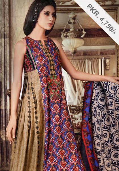 Latest Women Best Pakistani & Indian  Winter Dresses Designs Collection 2014-2015 (20)