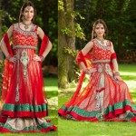 New Indian Fashion Long Shirt Anarkali Dresses for Girls 2014-2015 | Fancy Embroidered Formal Collection