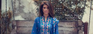 Bareeze Fall Winter Classic Embroidered Dresses Collection for Women 2015