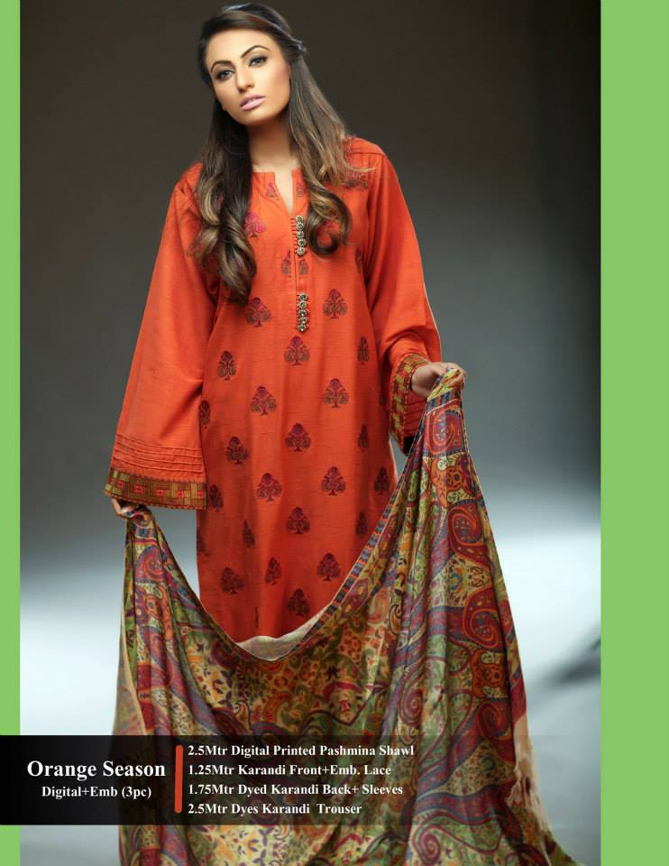 Hadiqa Kiani Winter Collection Linen & Karandi Dresses with Shawls for Women 2014-2015 (29)