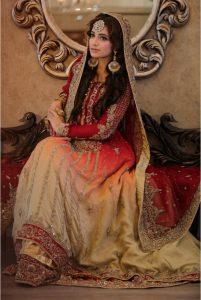 Pakistani Designer Bridal Dresses