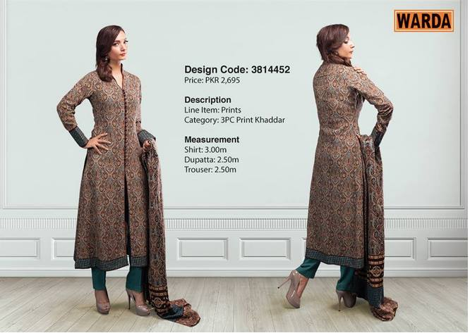 WARDA Designer Ready To Wear Dresses Winter Grace Collection 2014-15 for Women (10)