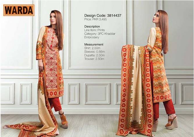 WARDA Designer Ready To Wear Dresses Winter Grace Collection 2014-15 for Women (16)
