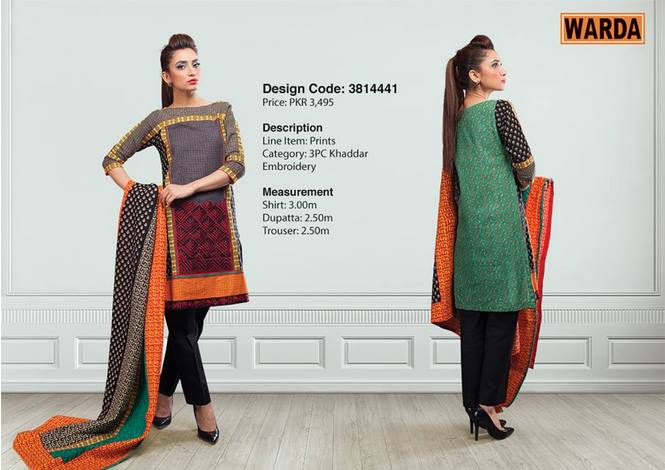 WARDA Designer Ready To Wear Dresses Winter Grace Collection 2014-15 for Women (17)