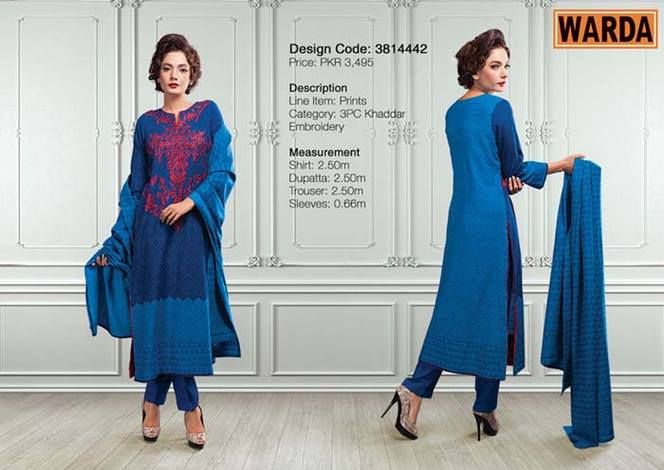 WARDA Designer Ready To Wear Dresses Winter Grace Collection 2014-15 for Women (24)