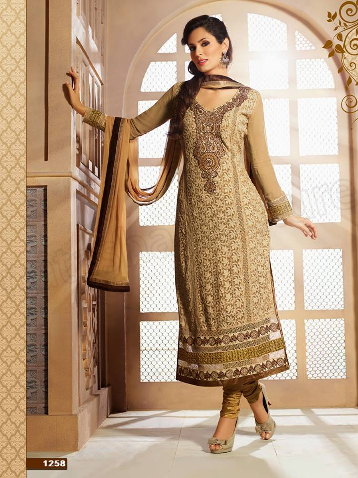 Pakistani & Indian Straight Cut Dresses Collection 2015-2016 (15)