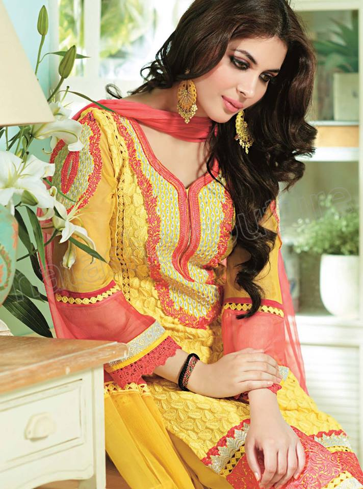 Pakistani & Indian Straight Cut Dresses Collection 2015-2016 (23)