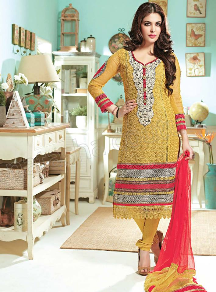 Pakistani & Indian Straight Cut Dresses Collection 2015-2016 (29)
