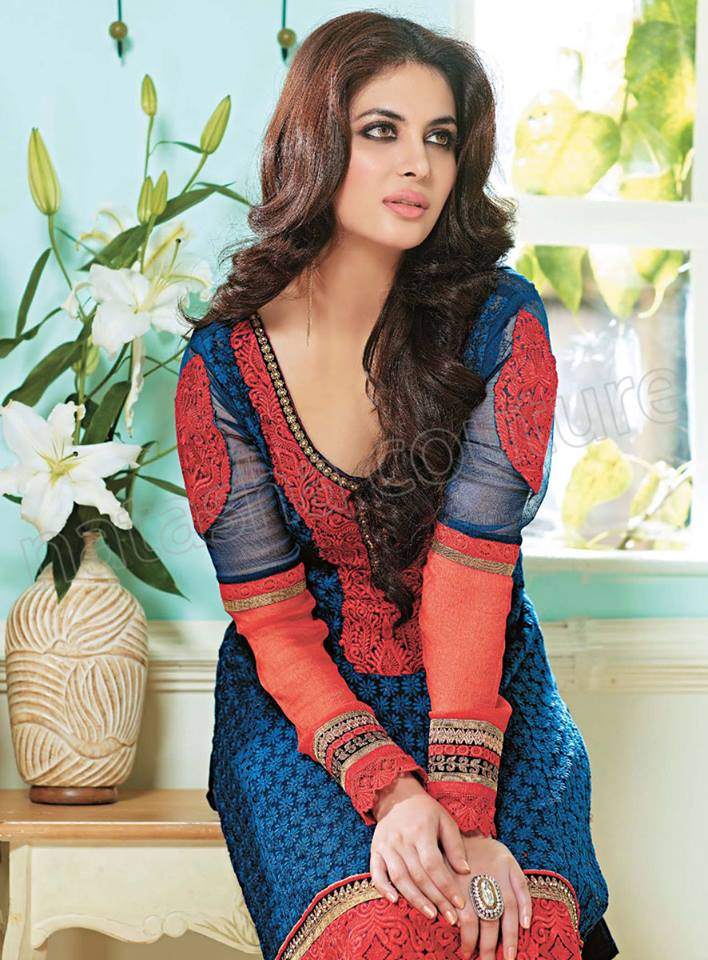 Pakistani & Indian Straight Cut Dresses Collection 2015-2016 (30)