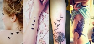 Cute Bird Tattoo Design Ideas For Men & Women with Meanings