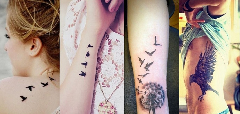Tattoo Designs Add Comment Bird With Meanings