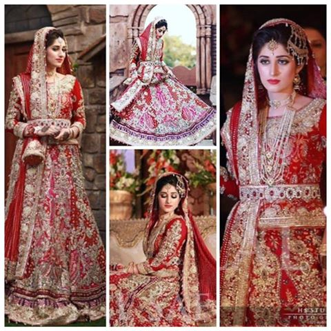 Ali Xeeshan Latest Bridal Wedding Dresses Collection 2016-2017 (30)