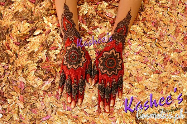 Beautiful Kashee's Mehndi Designs Collection 2016-2017 for Girls (4)